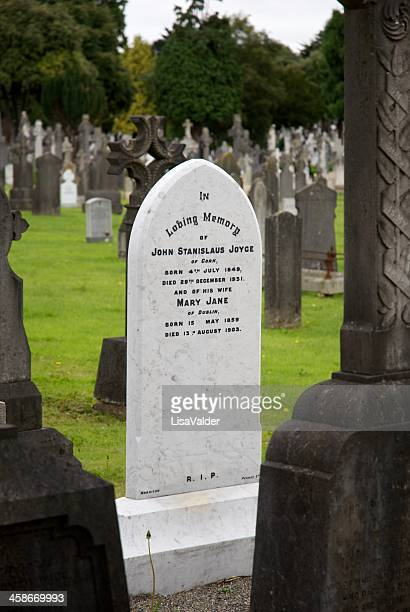 james joyce family grave - james joyce stock pictures, royalty-free photos & images