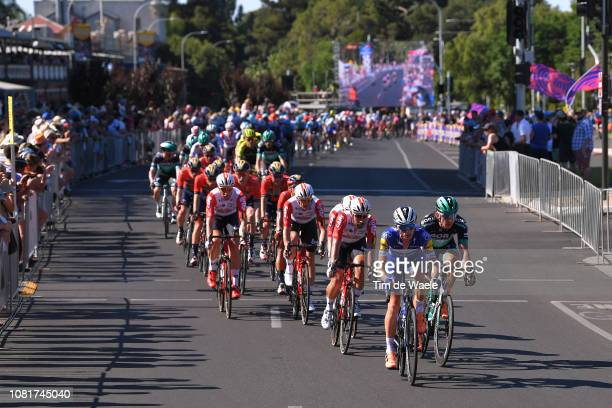 James Knox of Great Britain and Deceuninck QuickStep / Roger Kluge of Germany and Team Lotto Soudal / Peloton / during the 2019 Tour Down Under...