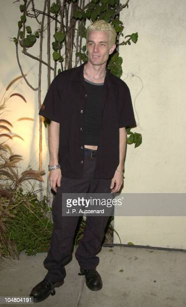 James Marsters during 2002 UPN Network Winter TCA Press Tour at Twin Palms Restaurant in Pasadena California United States