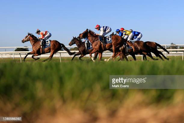 James McDonald on Through The Cracks wins race 9 the Hunter Valley Premium Meats T-Bone Steaks Benchmark 88 Handicapduring Racing at Newcastle...