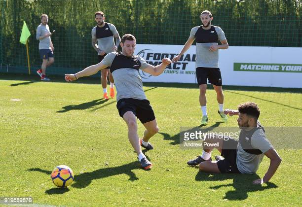 James Milner and Alex OxladeChamberlain of Liverpool during a training session at Marbella Football Center on February 17 2018 in Marbella Spain