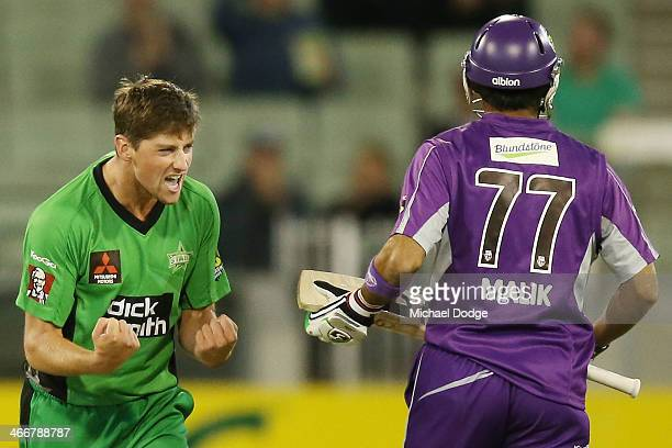 James Muirhead of the Stars celebrates the wicket of Shoaib Malik of the Hurricanes during the Big Bash League Semi Final match between the Melbourne...