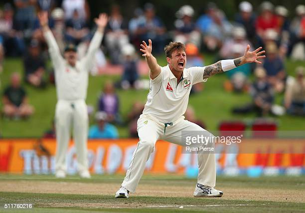 James Pattinson of Australia appeals for a wicket during day four of the Test match between New Zealand and Australia at Hagley Oval on February 23...