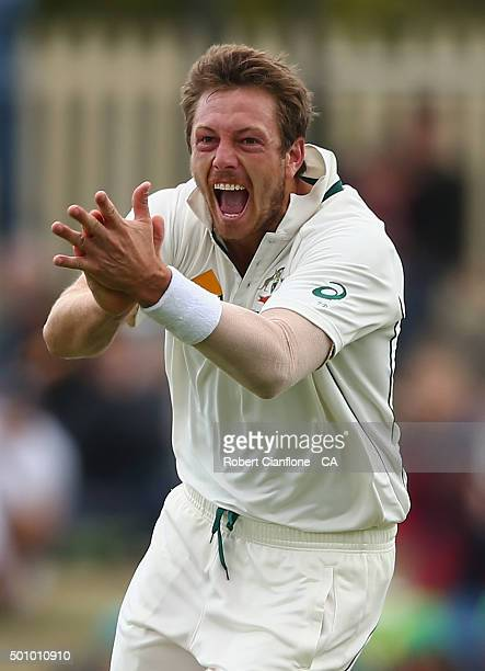 James Pattinson of Australia celebrates after taking the wicket of Jermaine Blacwood of the West Indies during day three of the First Test match...