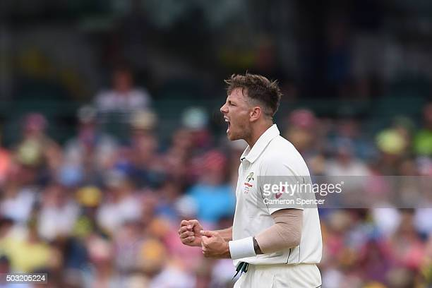 James Pattinson of Australia celebrates dismissing Darren Bravo of West Indies during day one of the third Test match between Australia and the West...