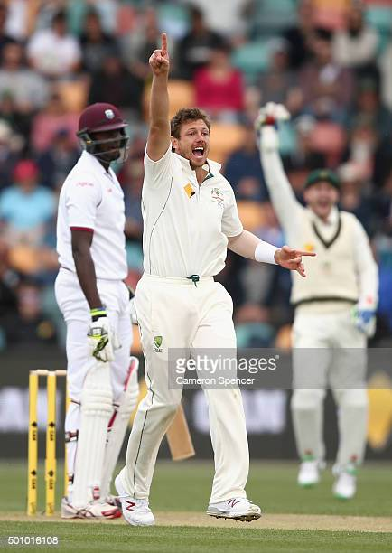 James Pattinson of Australia celebrates dismissing Jason Holder of the West Indies during day three of the First Test match between Australia and the...