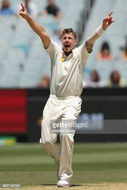 James Pattinson of Australia celebrates the wicket of Rajendra Chandrika of the West Indies during day four of the Second Test match between...
