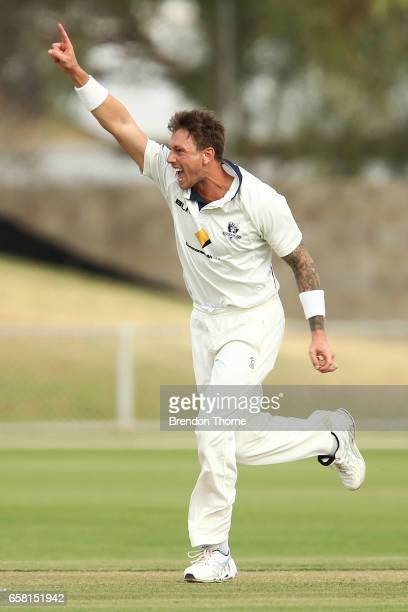 James Pattinson of the Bushrangers celebrates after claiming the wicket of John Dalton of the Redbacks during the Sheffield Shield final between...