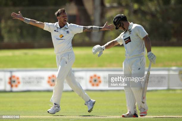 James Pattinson of the Bushrangers unsuccessfully appeals for the wicket of Hilton Cartwright of the Warriors during the Sheffield Shield match...
