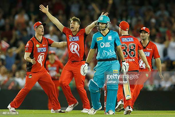 James Pattinson of the Melbourne Renegades celebrates the wicket of Joe Burns of the Brisbane Heat during the BIg Bash League match between the...