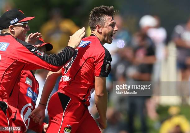 James Pattinson of the Renegades celebrates taking the wicket of Shoaib Malik of the Hurricanes during the Big Bash League match between the Hobart...