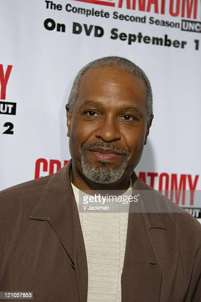 James Pickens Jr during Grey's Anatomy DVD Season 2 Release Party at Social Hollywood in Los Angeles CA United States