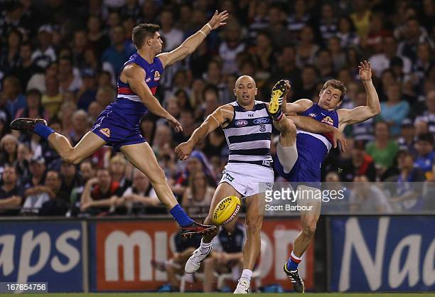 James Podsiadly of the Cats competes for the ball during the round five AFL match between the Western Bulldogs and the Geelong Cats at Etihad Stadium...