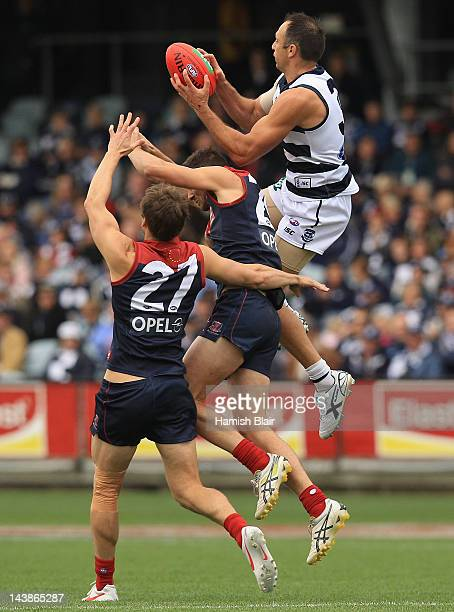 James Podsiadly of the Cats flies high to mark during the round six AFL match between the Geelong Cats and the Melbourne Demons at Simonds Stadium on...