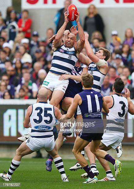 James Podsiadly of the Cats marks the ball during the Second AFL Qualifying Final match between the Geelong Cats and the Fremantle Dockers at Simonds...