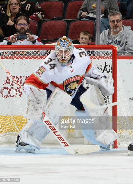 James Reimer of the Florida Panthers gets ready to make a save against the Arizona Coyotes at Gila River Arena on December 19 2017 in Glendale Arizona