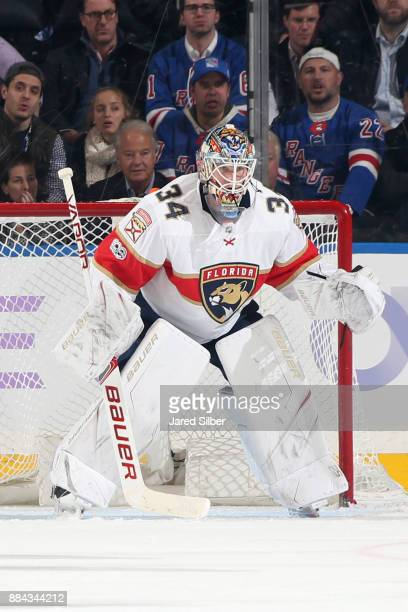 James Reimer of the Florida Panthers tends the net against the New York Rangers at Madison Square Garden on November 28 2017 in New York City The...