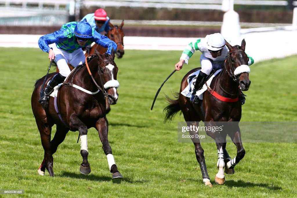 Grand Steeple Chase Paris - Auteuil