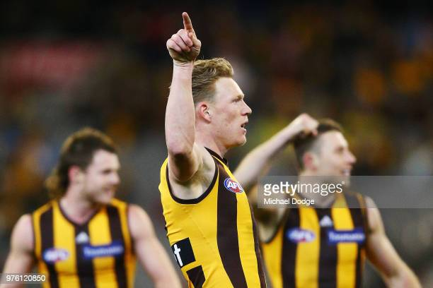James Sicily of the Hawks celebrates a goal during the round 13 AFL match between the Hawthorn Hawks and the Adelaide Crows at Melbourne Cricket...