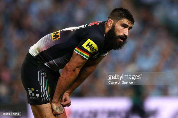 James Tamou of the Panthers looks on during the NRL Semi Final match between the Cronulla Sharks and the Penrith Panthers at Allianz Stadium on...