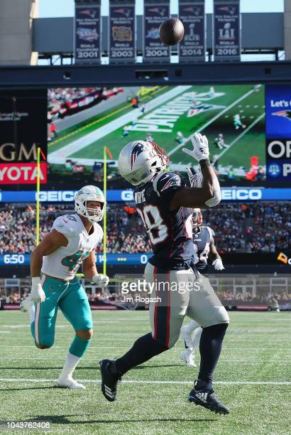 James White of the New England Patriots catches a touchdown pass during the third quarter against the Miami Dolphins at Gillette Stadium on September...