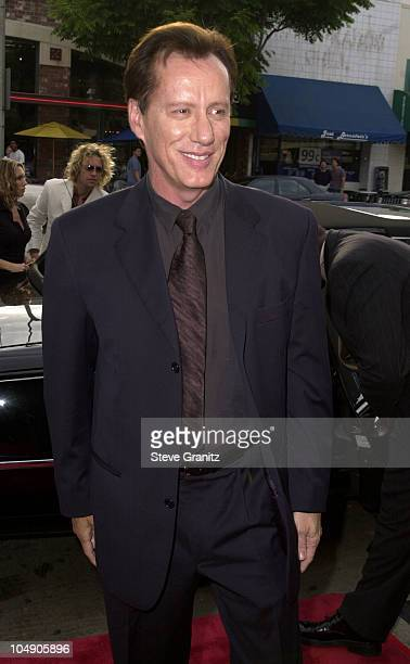 James Woods during Final Fantasy: The Spirits Within Premiere at Mann Bruin Theatre in Westwood, California, United States.