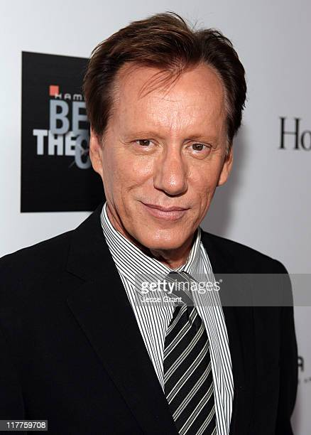 James Woods during Hamilton and Hollywood Life Behind The Camera Awards - Red Carpet at The Highlands in Hollywood, California, United States.