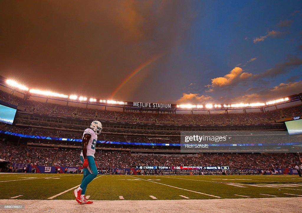 Miami Dolphins v New York Giants : ニュース写真
