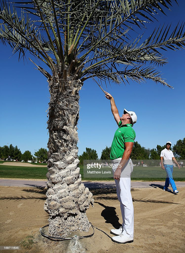 Jamie Donaldson of Wales tries to retrieve his ball from a tree on the 8th hole during day three of the Abu Dhabi HSBC Golf Championship at Abu Dhabi Golf Club on January 19, 2013 in Abu Dhabi, United Arab Emirates.