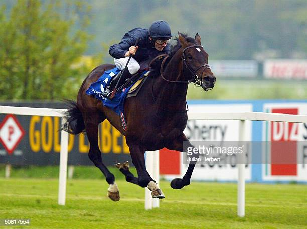 Jamie Spencer and Yeats leave the field behind them to land The Derrinstown Stud Derby Trial Stakes race run at Leopardstown Racecourse on May 9 2004...