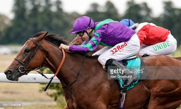 Jamie Spencer riding Querelle win The starsportsbet/British Stallion Studs EBF Fillies' Novice Stakes at Kempton Park on August 15 2018 in Sunbury...