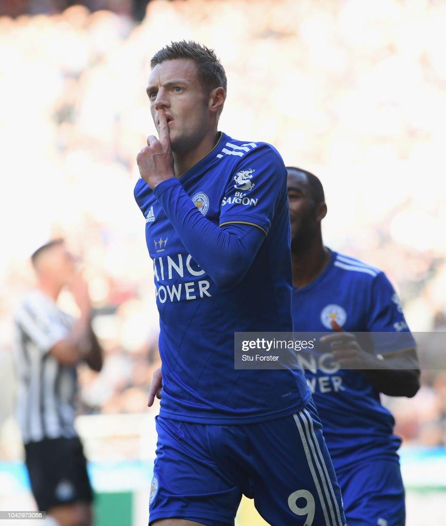 Newcastle United v Leicester City - Premier League : News Photo
