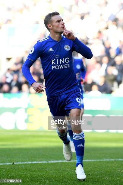 Jamie Vardy of Leicester City celebrates scoring the opening goal from a penalty during the Premier League match between Newcastle United and...