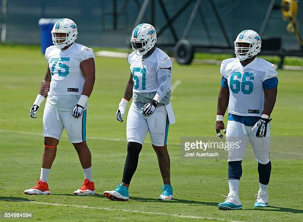 Jamil Douglas Mike Pouncey and Jacques McClendon of the Miami Dolphins walk to the next drill during the team's OTA's on May 26 2016 at the Miami...