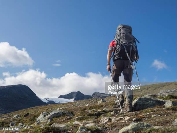 jamtland, sweden, man wirh backpack hiking in jamtlandsfjallet - hiking pole stock pictures, royalty-free photos & images