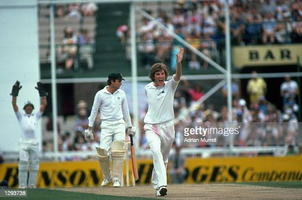 Bob Willis of England appeals for LBW on Greg Chappell of Australia during the Fifth Ashes Test match at the Sydney Cricket Ground in Australia The...