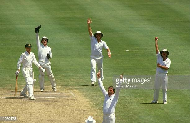 John Emburey of England and his team mates celebrate after he catches Peter Taylor of Australia during the Fifth Ashes Test match at Sydney Cricket...