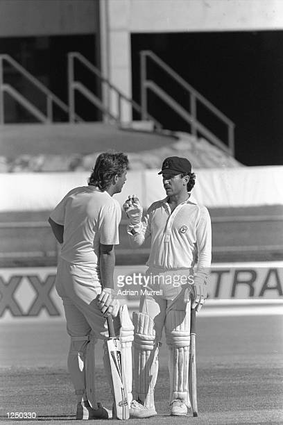 Queensland captain Allan Border and Ian Botham discuss tactics during the Sheffield Shield match against South Australia at Brisbane Mandatory Credit...