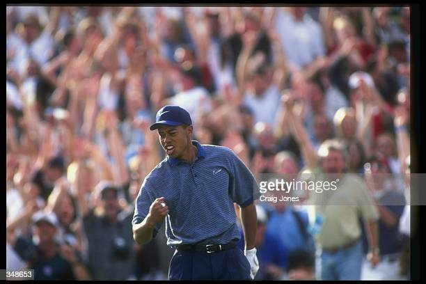 Tiger Woods celebrates after making a hole in one during the Phoenix Open at the TPC of Scottsdale in Scottsdale Arizona Mandatory Credit Craig Jones...