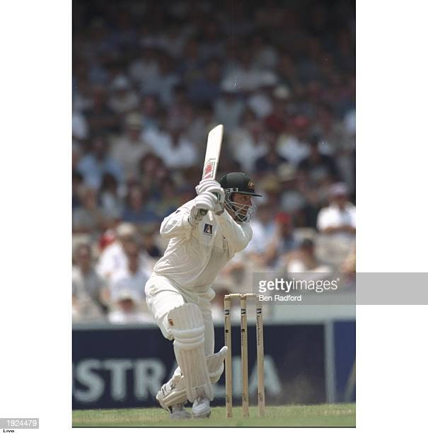 Mark Taylor of Australia batting during the second test match against South Africa at the Sydney Cricket Ground in Australia Mandatory Credit Ben...