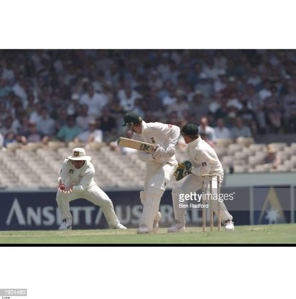 Mark Taylor the captain of Australia catches Shaun Pollock of South Africa during the second test match against South Africa at the Sydney Cricket...