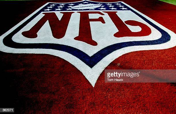 A general view of the NFL Endzone Logo before the Super Bowl XXXIII Game between the Atlanta Falcons and the Denver Broncos at the Pro Player Stadium...