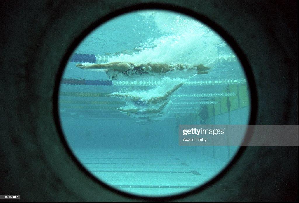 Action from the 1999 FINA World Cup at the Sydney International Aquatic Centre, Homebush, Sydney, Australia. \ Mandatory Credit: Adam Pretty /Allsport