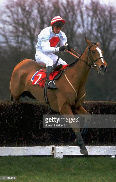 Kurakka ridden by Richard Dunwoody during a race at Sandown Park in Sandown England Mandatory Credit Julian Herbert /Allsport