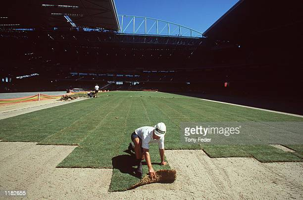 Damien Fox mangager of Strath Ayr Turf lays the first sod of grass in Colonial Stadium at the Docklands in Melbourne Australia Mandatory Credit Tony...