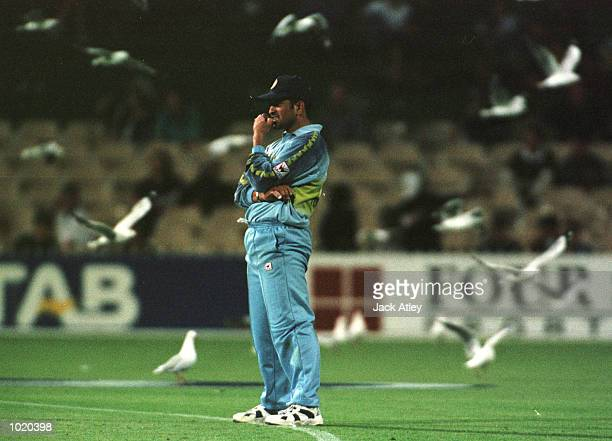 Indian captain Sachin Tendulkar looks on amongst the seagulls against Pakistan during the Carlton and United Breweries one day international between...