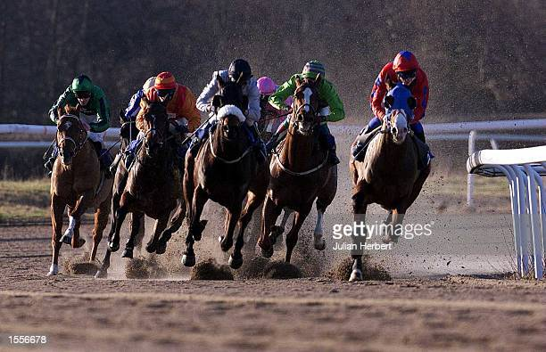 Niel callan and the blinkered Direct Reaaction come round the first bend at Lingfield Park before going on to land The Barry Dennis Pays First Past...