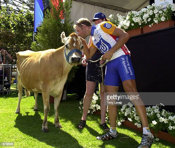 Luke Roberts of the University of South Australia team with the cow he was presented with as winner of stage 4 of the Tour Down Under held between...