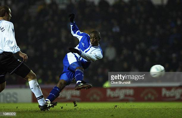 Nathan Ellington of Bristol Rovers scores a goal during the AXA sponsored FA Cup third round match against Derby County played at Pride Park in Derby...