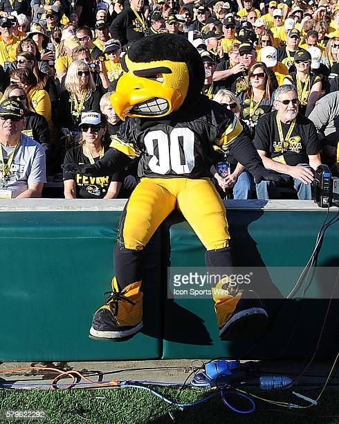 Iowa Buckeyes mascot Harky on the field during the Rose Bowl game played against the Stanford Cardinal played at the Rose Bowl in Pasadena CA